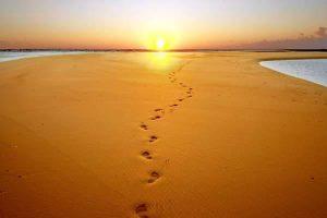 Осем стъпки към себе си - Самоков - Нирвана плюс - център за хармонизиране на тялото и душата