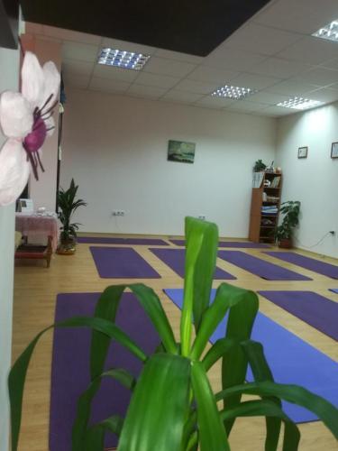 Yoga Samokov 4