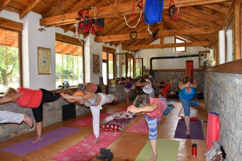Yoga i Aurveda 1
