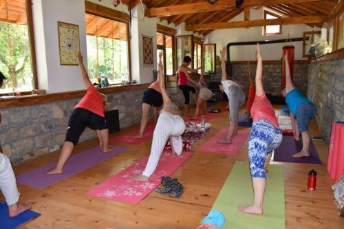 Yoga i Aurveda 5